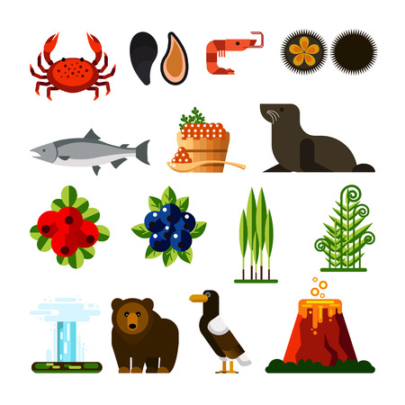 Set of Kamchatka Peninsula: crab, mussel, shrimp, sea urchin, fish, caviar, seal, cowberry, blueberry, ramson, fern, geyser, bear, eagle, volcano. Eurasia, Russian Far East, Kamchatka Region, Siberia.