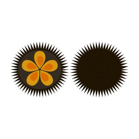 Black sea urchin arbacia lixula aquatic natural food Illustration