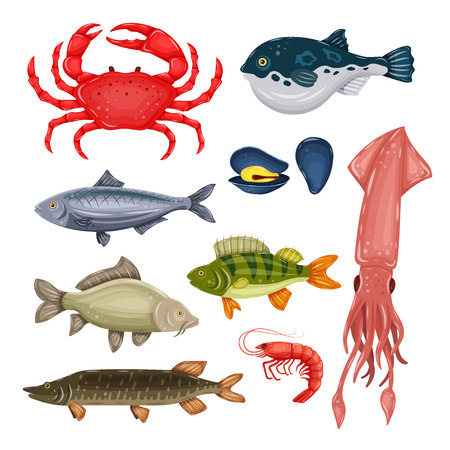 Seafood set with crab, fish, mussel and shrimp isolated on white background. Design for restaurant menu, market. Marine creatures in flat style - vector illustration Stock Photo