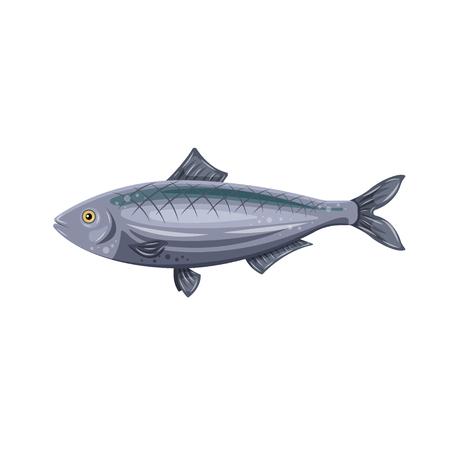 Vector icon flat herring fish isolated on white background. Marine fresh food