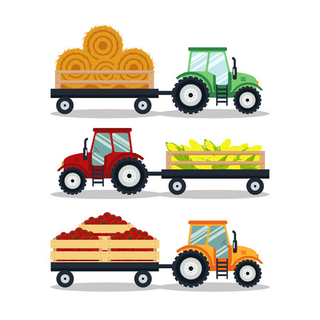 tractor trailer: Set flat tractors with a cart corn, hay, tomato isolated on white background. The agricultural machinery transports for farm with harvest - vector illustration Illustration