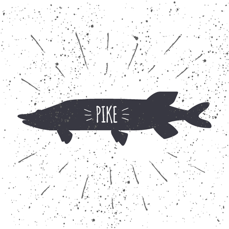 Hand drawn pike icon fish with textured background. Marine fresh food logo for restaurant menu, seafood shop design