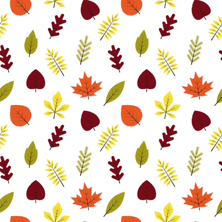 Seamless pattern autumn different leaves in flat style. Red, green, yellow, orange leaf on white background. Maple, spruce, oak, rowan, birch autumnal foliage - vector illustration.