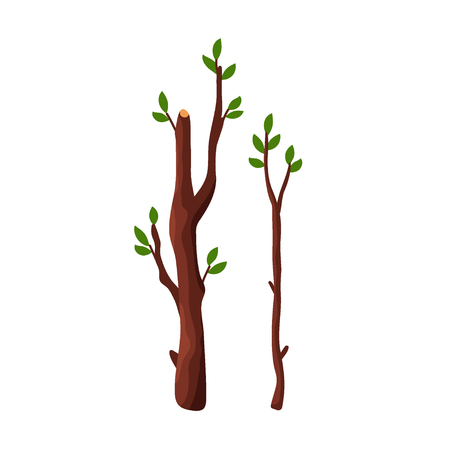 Cartoon tree branches with green leaves isolated on white background - flat vector illustration. Vettoriali