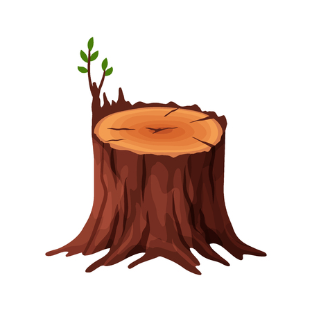 Cartoon old tree stump with cracks and roots isolated on white background. Tree stump vector illustration