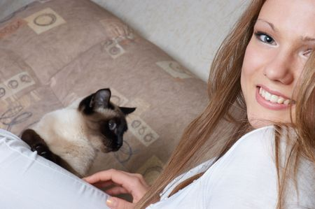 animal sexy: beautiful smiling girl in white with cat sitting on her leg Stock Photo
