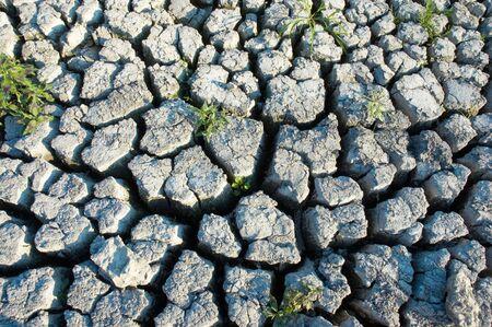 environment devastation background: cracked extremely dried ground  photo