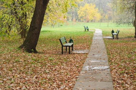 fall in the park, empty benches