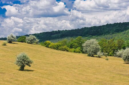rural landscape with blue sky and clouds Stock Photo - 5186913