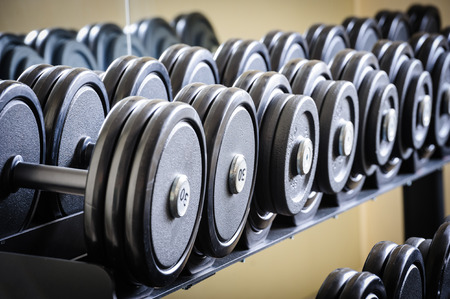 Row of barbells or dumbbells in the gym photo