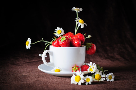 colorful still life: chamomiles and strawberries in white coffee cup, in rays of sunlight, on dark brown  Stock Photo