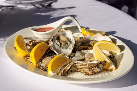 oysters plate photo