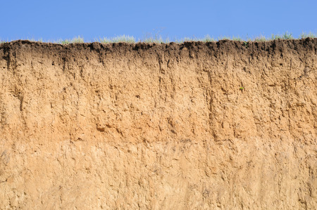 토양의 계층화 컷