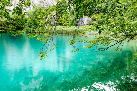 Extremely clear water of Plitvice Lakes, Croatia. Rainy day.