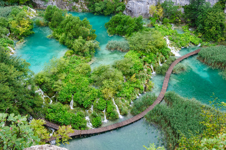 national plant: Bird view of beautiful waterfalls in Plitvice Lakes, National Park of Croatia