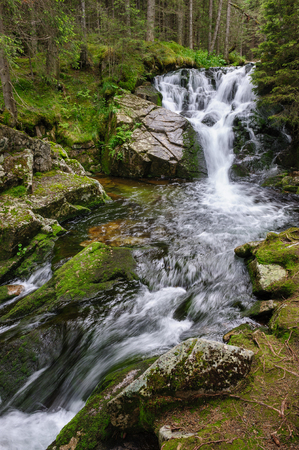 waterfall in the forest: Waterfall in deep forest at mountains, Retezat national park, Romania