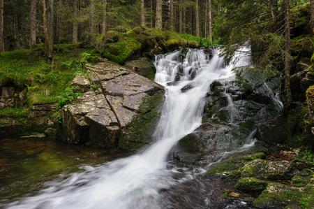 mojada: Cascada en el bosque profundo en las montañas, el parque nacional Retezat, Rumania Foto de archivo