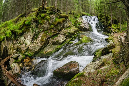 Waterfall in deep forest at mountains, Retezat national park, Romania. Made using fisheye lens.