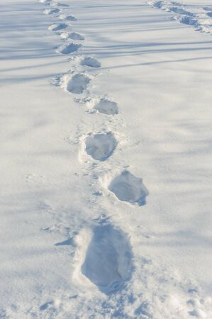 footmark: Human tracks on the fresh white snow
