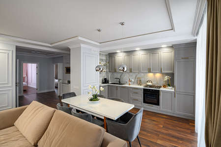 Grey luxury studio kitchen designed in modern style
