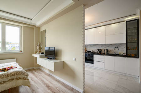 Modern studio apartment with white kitchen in classic style