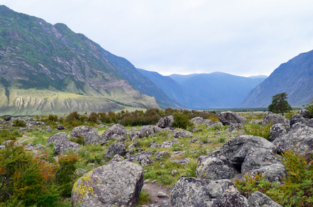 Mountain Altai. The valley of the river Chulcha