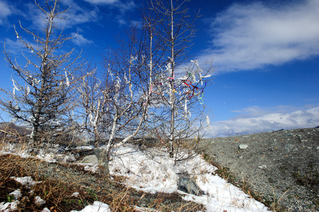 ulagan: Traditional fabric strips on top of the hill in Altai in spring