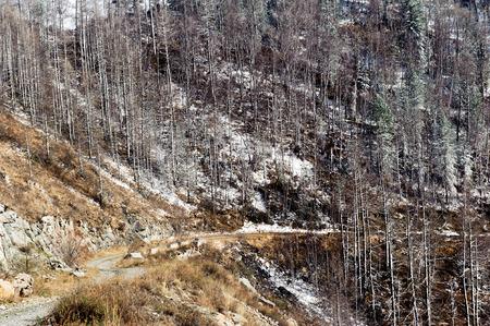 ulagan: Mountain pass in Aliai in early spring