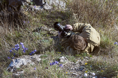 ulagan: Scientists photographertaking photo of a rhododendron bushes in Altai
