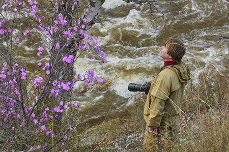 ulagan: Photographer looking with wonder on a rhododendron bush in Altai Stock Photo
