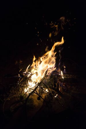 smolder: Fire flames and pine tree brunch burning in the dark Stock Photo