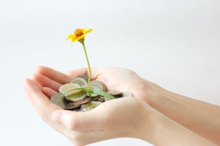 bloesem en munten in de hand