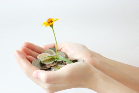saving energy: blossom and coins in hand