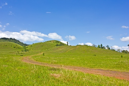 Grass hill, Bald mountain with blue sky, Thailand photo