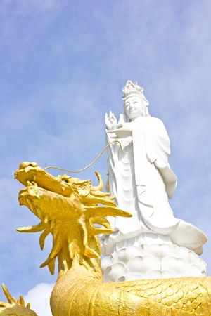 White Guan yin on the golden dragon photo