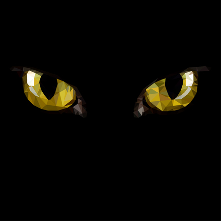 amber: Amber  cat eyes in darkness. Style triangulation