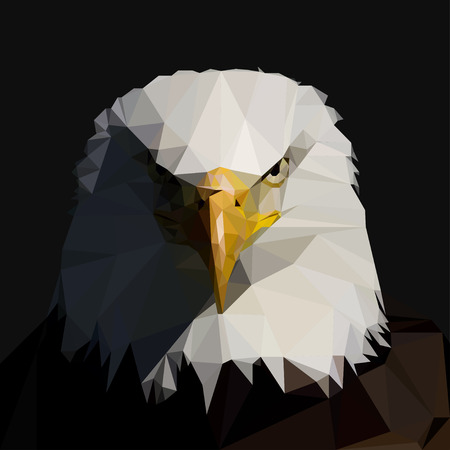 Bald  Eagle in the style of triangulation. Vector illustration Vettoriali