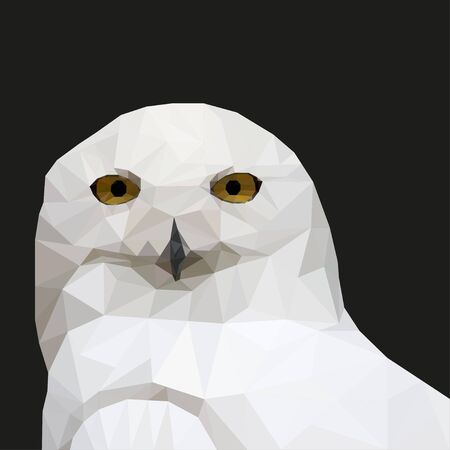 triangulation: White  Owl in the style of triangulation on a black background. Vector illustration