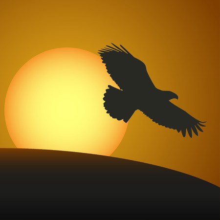 condor: Sunset  with a silhouette of an eagle. Vector illustration