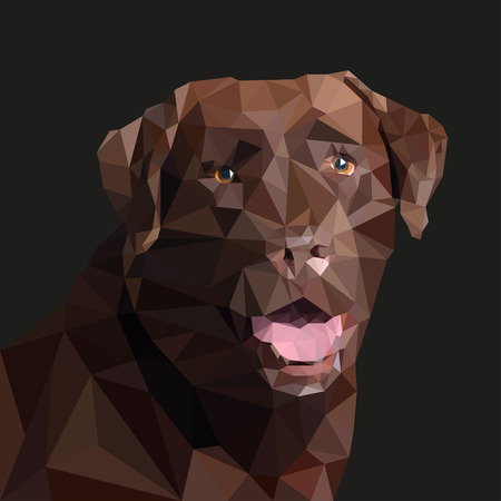 brown labrador: Brown  Labrador in the style of triangulation. Vector illustration Illustration