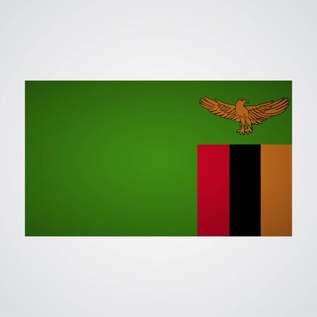 zambia flag: Zambia flag on a gray background. Vector illustration