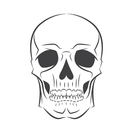 Black and white human skull. Vector illustration Illustration