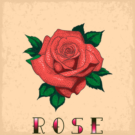 rose tattoo: Rose tattoo on a grunge background. Vector illustration Illustration