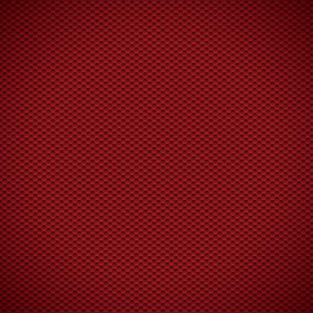 lightweight: Rer carbon texture fiber background. Vector illustration