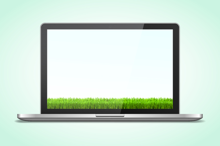 silver grass: Laptop in realistic style with shadow with grass background