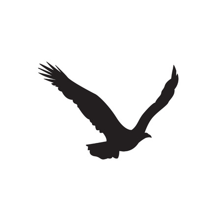 Silhouette of the eagle in flight with wings spread.