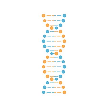 DNA in blue and orange color. Vector illustration.