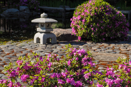 Stone lantern in a spring on a Japanese garden. Blurred focus.