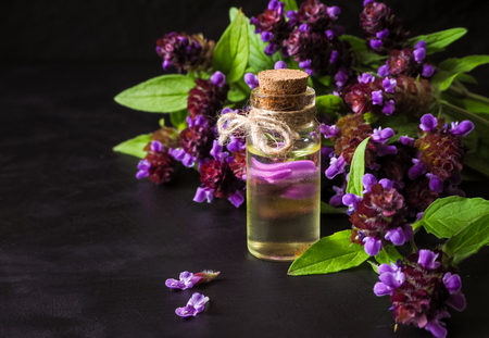 Medicinal herb. Common self heal (Prunella Vulgaris) scented oil.