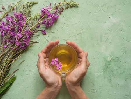 A cup of herbal tea in woman's hands against the background of wild flowers Reklamní fotografie